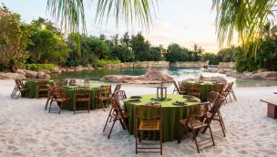 Discovery Cove Paradise Nights DInner