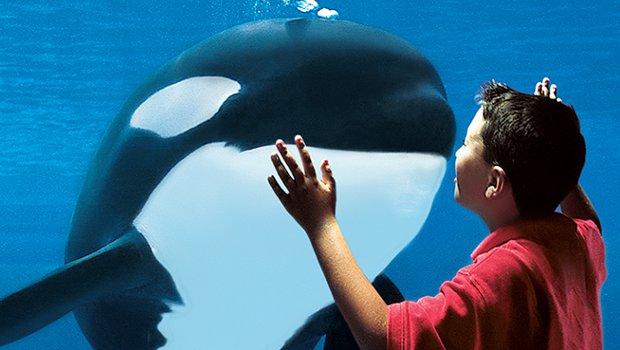 SeaWorld Aquarium