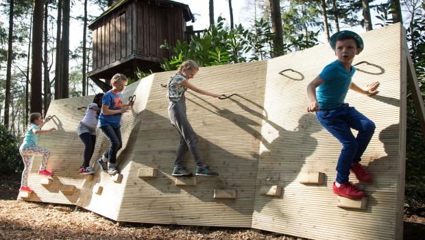 Burgers Zoo Apenkooi Klettern