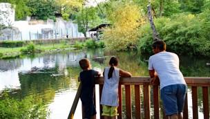 Zoo Karlsruhe: Märchen und Tiere in letzter Juli-Woche 2018 auf der Seebühne