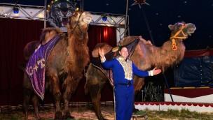 Spielpark Klein Zwitserland Zirkus 2018