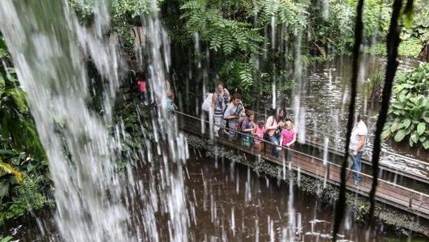 Wasserfall in Burgers' Bush in Burgers' Zoo Arnheim