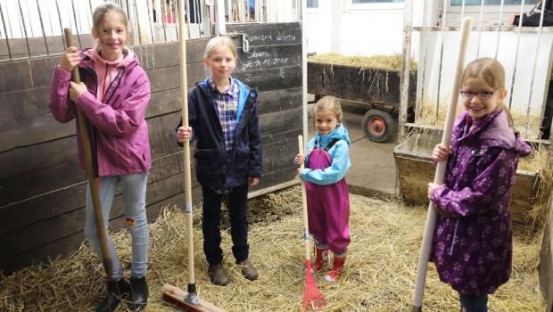 Zoo Rostock Sommerferien Programm 2018