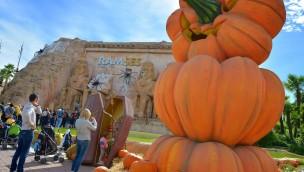 "Grusel im Gardaland: So wird ""Magic Halloween"" 2018 gefeiert!"