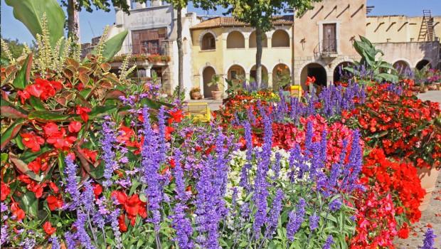 Hansa-Park Blumen in Spanien