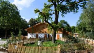 """""""Mühlendorf"""" in Hellabrunn eröffnet: Neuer Parkbereich zur heimischen Biodiversität"""