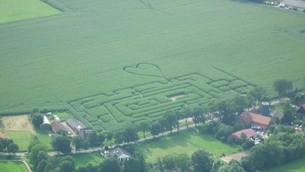 maislabyrinth-bauer-suedfeld