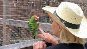 Wildpark Weißewarte am 3. Juli 2018 kostenlos besuchbar