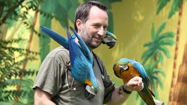 Tierarzt Dr. Viktor Molnar im Erlebnis-Zoo Hannover mit Papageien