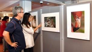 """Ausstellung """"Von Kopf bis Huf"""" 2018 im Zoo Rostock: Zoofotografen zeigen während der Sommerferien ihre Fotos"""