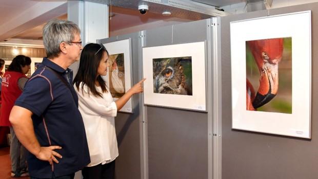 Zoo Rostock Foto-Ausstellung 2018