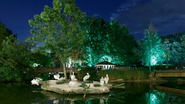 Nachts im Zoo Allwetterzoo Münster