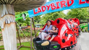 "Tayto Park: Neue Dreh-Achterbahn ""Ladybird Loop"" eröffnet"