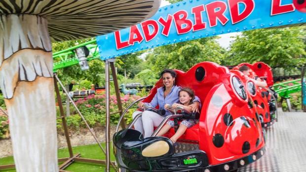 Tayto Park Ladybird Loop