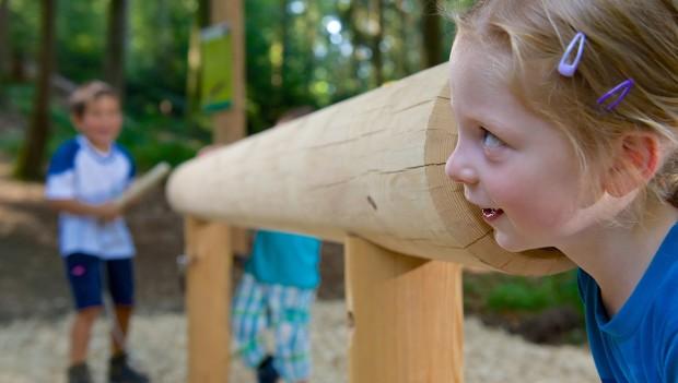 Baumtelefon Skywalk Allgäu Waldgeschichten