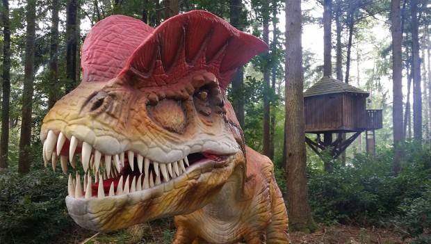 Dino im Zoo