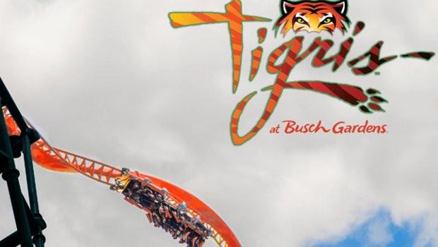 Busch Gardens Tampa Tigris neu 2019