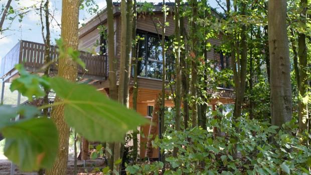 Alpenpark Neuss BaumChalet Wald-Baumhaus