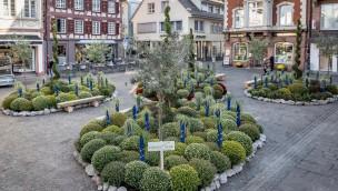 Europa-Park unterstützt Blumen- und Kulturfestival Chrysanthema Lahr 2018