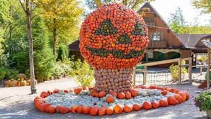 Eifelpark feiert 2018 erstmals Halloween mit Geister-Labyrinth, Nachtwanderung und Shows