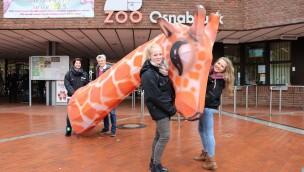 """Zoo Osnabrück plant """"Zoo-Lights"""" 2019 mit eigenen Lichtfiguren und Vermarktung"""