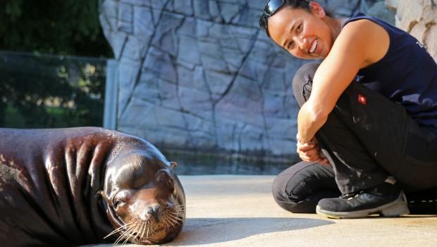 Zoo Karlsruhe Claudia Vollhardt mit Seelöwe
