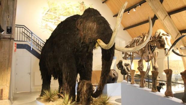 Historyland Niederlande Ausstellung