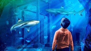 SEA LIFE Malaysia eröffnet im April 2019 als Teil des LEGOLAND Malaysia Resort