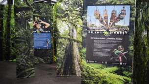 Silent Forest Ausstellung Allwetterzoo Münster