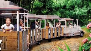 """Terra Botanica eröffnet 2019 neue Zug-Rundfahrt """"Le Petit Train du Végétal"""" als Naturerlebnis"""