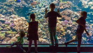 Zoo Rostock Kinder am Aquarium