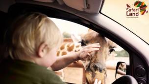 Safariland Stukenbrock: Günstige Tickets für 2020 für nur 16,90 Euro erhältlich!
