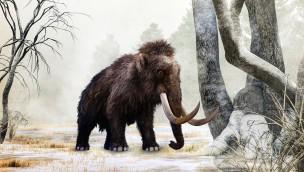 Serengeti-Park 2019 mit 6 Neuheiten: Das bietet die neue Saison in Hodenhagen!