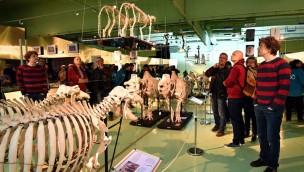 Zoo Rostock präsentiert neue Ausstellung zur Fortbewegung der Wirbeltiere im Darwineum