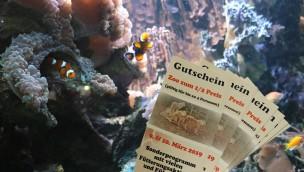 """Zoo Osnabrück verabschiedet Winterzauber 2019 mit """"Zoo zum halben Preis""""-Aktion"""