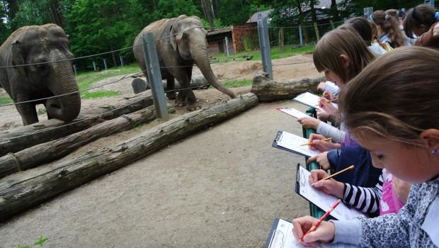 Tierpark Cottbus Zooschule