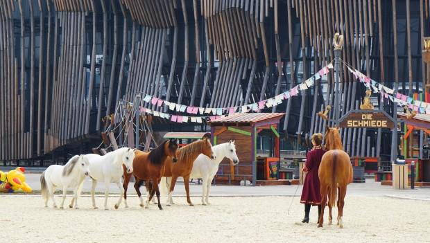 Freidressur: Sylvie Wilms und ihre Pferde