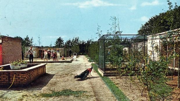 Sybrandy's Speelpark Foto frühe Jahre