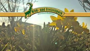 Erneut Automaten und Kassen im Wild- und Freizeitpark Allensbach geplündert