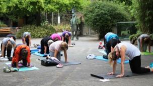 Zoo Osnabrück Yoga und Meditation 2019