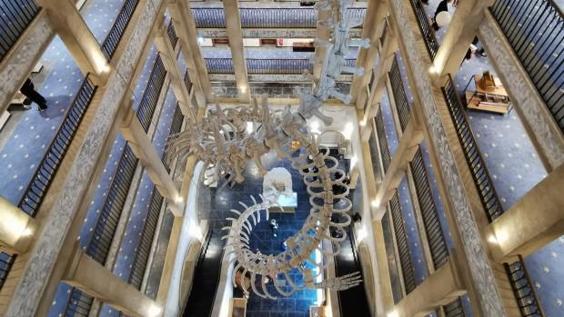 Europa Park Hotel Kronasar Lobby mit Skelett von oben