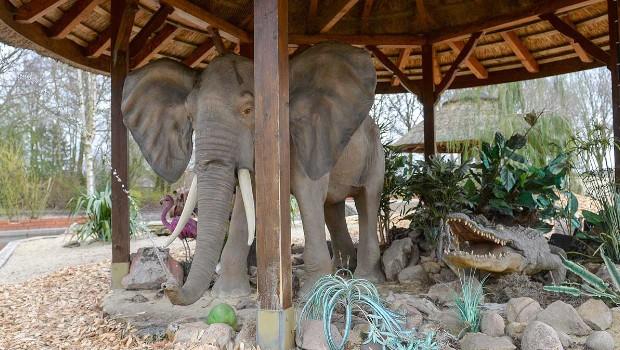 Jaderpark Rundbootfahrt Elefant