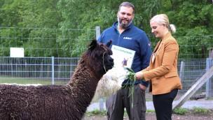 Wildpark Müden Alpakas Patenschaft
