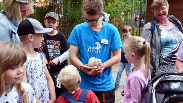 Zoo Rostock Kindertag 2018