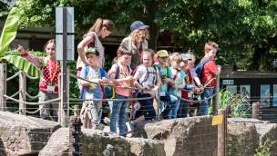 Zooschule Heidelberg: Ferienprogramm in Pfingstwochen 2019 für Kinder
