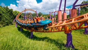 Tenth Ring Roller Coaster Chimelong Paradise