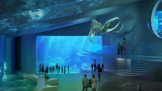 Tiergarten Schönbrunn Aquarium Artwork innen