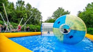 Wildpark Müden veranstaltet Kindertag am 23. Juni 2019 mit zahlreichen Attraktionen