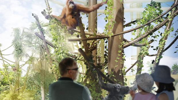 Auckland Zoo Erweiterung Future Zoo Artwork
