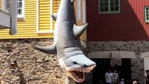 Großer Hai in den Europa-Park zurückgekehrt: Fotomotiv im Skandinavischen Dorf wieder nutzbar
